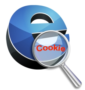 Tipos de Cookies.
